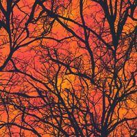 Halloween Fabric - Digital Raven Moon Spooky Tree Orange - Robert Kaufman YARD