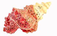 Beautiful Conch Shell Trinket Box. Hand Made with Swarovski Crystals & Enamel