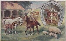 OLD POSTCARD PEAT MOSS LITTER ADVERTISING FARMING HORSE PIG FARM ANIMAL SC383