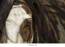 HORSE ART PRINT Blue Lisa Dearing