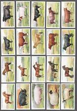 1916 John Player & Sons British Live Stock Tobacco Cards Complete Set of 25