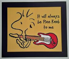 PEANUTS ♡ Woodstock ☆ Pine Knob ♡ Magnet ♡ Michigan Concerts ☆