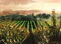 Napa Valley Morning  :  Signed LE Art Print : Sandra Watercolors™ California