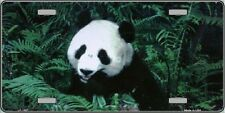 Panda Bear Novelty Metal License Plate