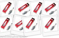 8 PACK OF CHAMPION RC12YC SPARK PLUGS OEM 12-132-02/491055/499608/692051