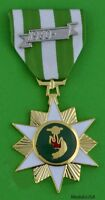 Anodized Republic of Vietnam Campaign Medal (VCM) Full Size Bright Metal T1