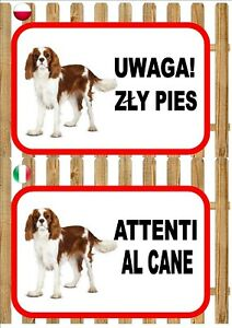 King Charles Beware Of The Dog sign UWAGA ZŁY PIES ATTENTI AL CANE Plaque