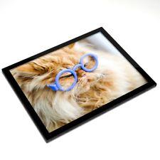 Mantel Individual De Cristal 20x25 Cm-Gracioso Ginger Cat Gafas #3844
