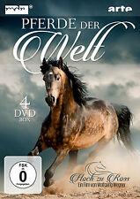 DVD Pferde der Welt Dokumentation von Wolfgang Wegner 4DVDs