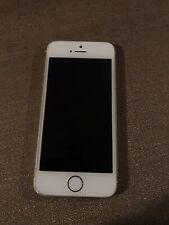 Apple iPhone 5s/16GB/Gold/Verizon/Has Visible Scratches On The Screen/chipping