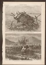 Indian Grave On Yellowstone River. Antelope Hunting. Harper's Weekly 1874