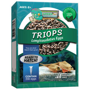 Triops Longicaudatus Eggs Pure 200 Eggs For Hatching and Culture