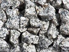 1/2 lb DALMATION JASPER Bulk Tumbling Rough Rock Healing Crystals India FS