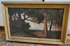 tableau école Française dlg Barbizon XIXe vers 1880 hsp pin pinède Landes ?