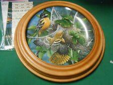 Knowles Collector Plate in Wood Frame The Baltimore Oriole 1985 by Kevin Daniel