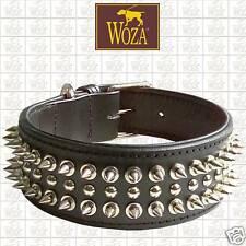 WOZA Premium Hundehalsband Vollleder Pitbull Lederhalsband Soft Rindnappa C2619