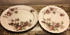 "Lot of 2 Johnson Brothers HARVEST TIME 11 3/4"" Oval Serving Platter & Plate"