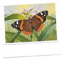 Lot 3 Greeting cards + envelopes - Birthday Plain Flower Butterfly
