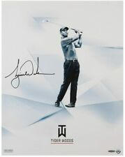 """TIGER WOODS Autographed """"Clarity"""" 16"""" x 20"""" Photograph UDA"""