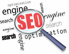 SEO Campaign Get Your Website Rank on First Page Google 1st Page [GUARANTEED]