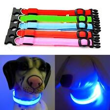 Petit Chien Collier en Nylon Collier d'animal favori Pet LUMINEUX LED Collier EH