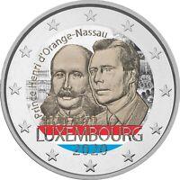 2 Euro Gedenkmünze Luxemburg 2020 coloriert  mit Farbe / Farbmünze Prinz Henri 2