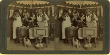 EXC 1902 U&U Funny Stereoview, Sausage Grinder with Dog & Cat Insertions