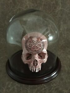 Dome Combo - Hail Hydra Carved Replica of Real Human Skull by Zane Wylie