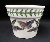 PORTMEIRION BOTANIC GARDEN FLOWER POT PLANTER SUSAN WILLIAMS - ELLIS #2