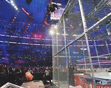 CAGE JUMP WWE WRESTLEMANIA SHANE MCMAHON SIGNED AUTO 11x14 PHOTO BAS COA BECKETT