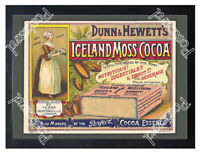 Historic Iceland Moss Cocoa, 1890s. Advertising Postcard
