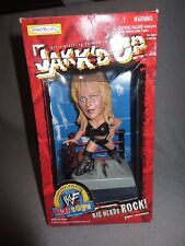 NIB WWF JAKK'D UP BIG HEADS ROCK SABLE 1998*