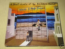 A brief glimpse of the Relentless Pursuit-a tribute to Pink Floyd