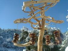 5' AFGRAY GW Sandblasted Manzanita Parrot Tree Stand bird perch PLAY STAND GYM