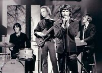 JIM MORRISON & THE DOORS ROCK MUSIC CONCERT 8X10 GLOSSY HIGH QUALITY PHOTO