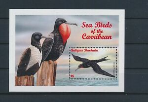 LO55691 Antigua & Barbuda great frigatebird birds sheet MNH