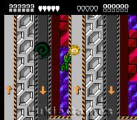 Battletoads - Rare NES Nintendo Great Game Battle Toads