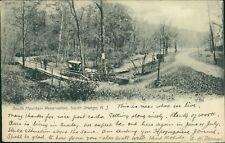 West Orange, New Jersey Reservation Horse Cart - Mr Booker, Guildford    CB.393