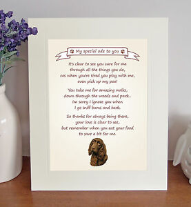 Field Spaniel Thank You FROM THE DOG Poem 8 x 10 Picture/10x8 Print Fun Gift