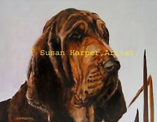 More details for sale bloodhound signed dog print by susan harper unmounted