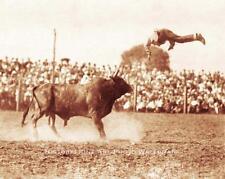 PRO RODEO COWBOY BULL RIDER PANCHO VILLA VINTAGE PHOTO OLD WEST 1912  #21463