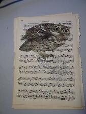 Imagen de pájaro vintage hoja de música impresa, arte de Pared, Antiguo, mochuelo