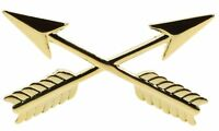 Army Branch Insignia S.F.  Crossed Arrows Hat or Lapel Pin H14555D93