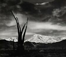 1948/63 Vintage Print SUNRISE MOUNT TOM Landscape Photo Art 16X20 By ANSEL ADAMS