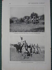 1915 WWI WW1 PRINT ~ GERMAN CAVALRY SOUTH-WEST AFRICA ~ GERMAN CAMEL CORPS