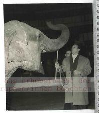 ORIGINAL PRESSEFOTO: 1956 TINO ROSSI in PARIS with ELEPHANT  WINTER CIRCUS GALA