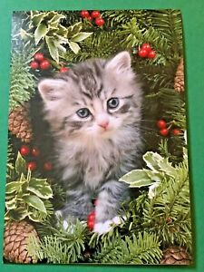 Leanin' Tree Christmas Card  - Cat in Wreath Theme - ID#362