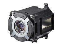 NP42LP Projector Replace Lamp W/Housing for NEC PA653U/PA703W/PA803U/PA853W