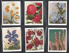 WILLS - FLOWERING SHRUBS - FULL SET OF 30 CARDS