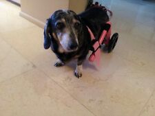 New listing Custom Dog Wheelchairs/ Light Weight/ No Assembly Required:) Small Dogs